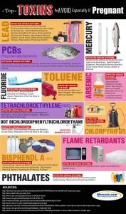 Toksin / Racun yang Perlu di Hindari Terutama Jika Sedang Hamil – Infographic
